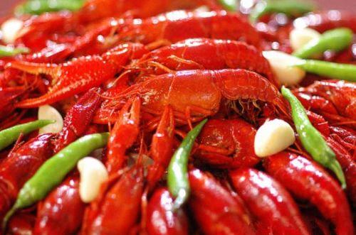 Les crevettes d'Yicheng